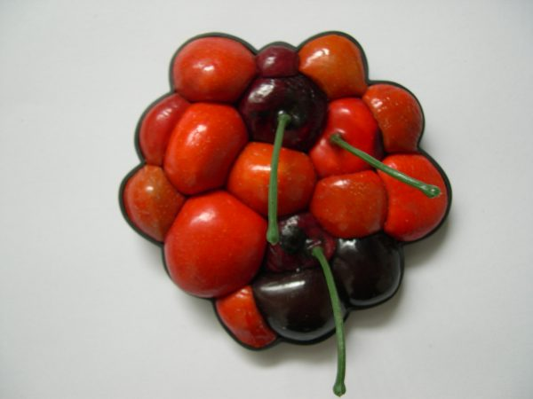 bridget kennedy Tumorous Cherry Miracle gro brooch