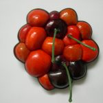 bridget kennedy Tumorous Cherry Miracle gro brooch