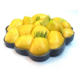 lipoma lemon brooch bridget kennedy
