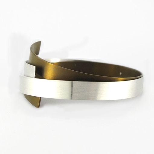 vanessa-williams-titanium-bangle-silver-bronze
