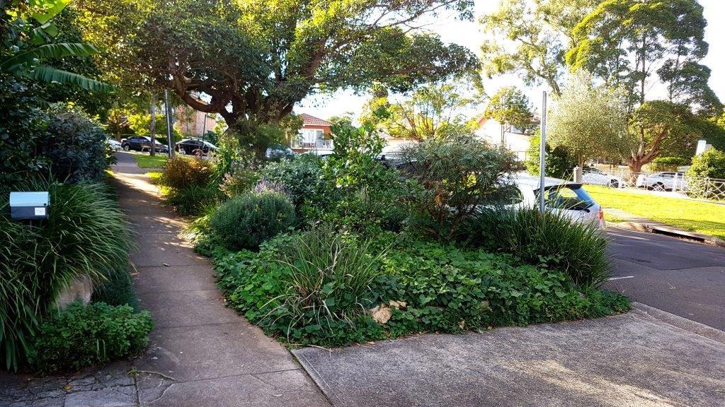 edible verge gardens